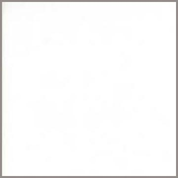 Bella Solids - White Bleached