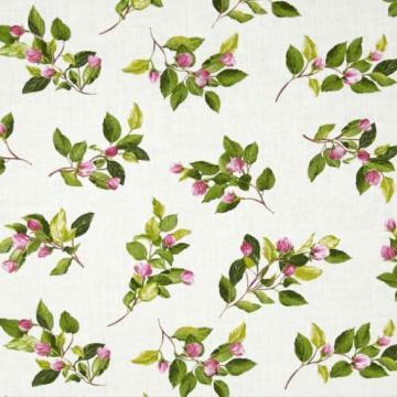 Apfelblüten auf creme