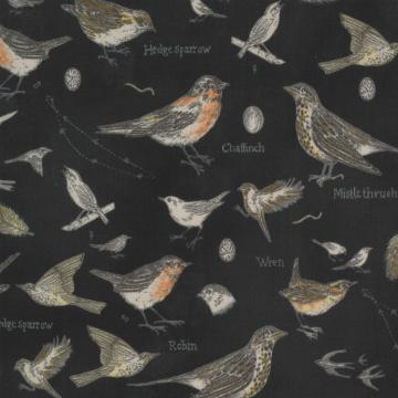 Botanicals - Vögel charcoal