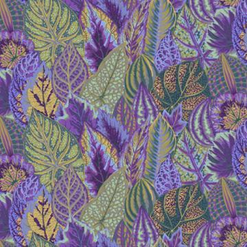 Coleus lavender von Philip Jacobs