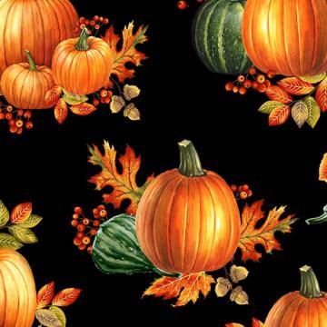 herbstliche Kürbisse auf schwarz Autumn