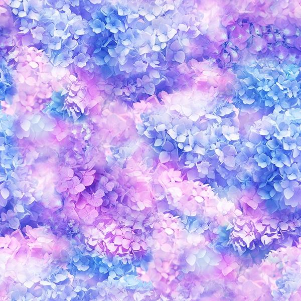 Hortensien Traum Lilac  - ein Sommertraum