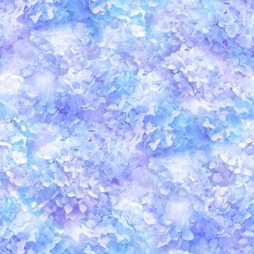 Hortensien Traum himmelblau lila - ein Sommertraum