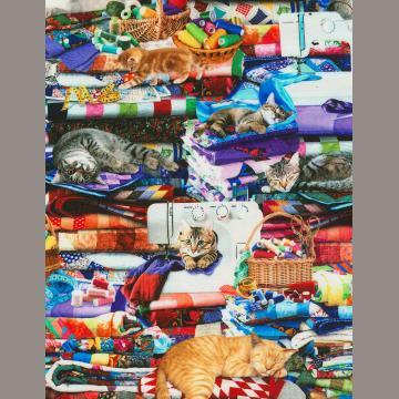 Katzen im Nähzimmer