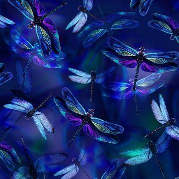 Libellen saphireblau - ein Sommertraum