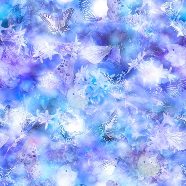 Lilly Schmetterlinge  - ein Sommertraum
