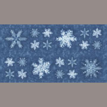 "Panel ""Schneeflocken auf hellblau"" Debby Maddy"