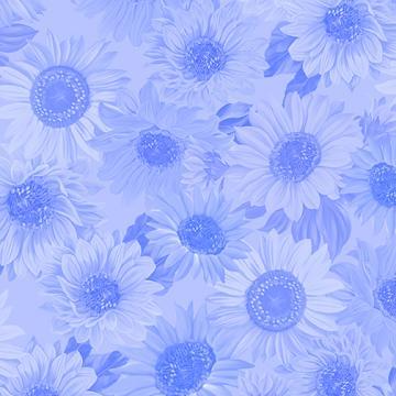 Sonnenblumen ton in ton hellblau