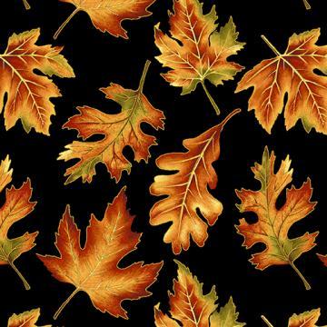 Herbstblätter auf schwarz Autumn